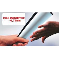 Folie magnetica de 0.75 mm